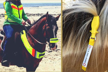 ManeStay Emergency ID Tags in a horse's mane.