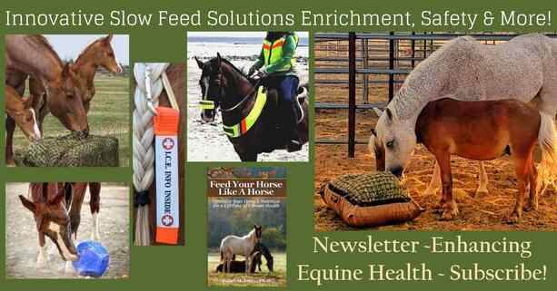 Find out about equine health and sales Hay Pillow