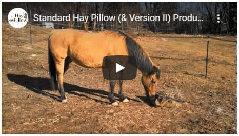 Standard Hay Pillow Video - See How it Works thumbnail